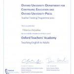 VD Certificate 1
