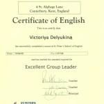 VD Certificate 3