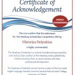VD Certificate 4